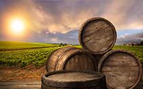 澳大利亚政府积极扶持小酒庄发展